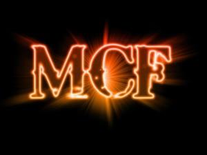 MCF-300×225