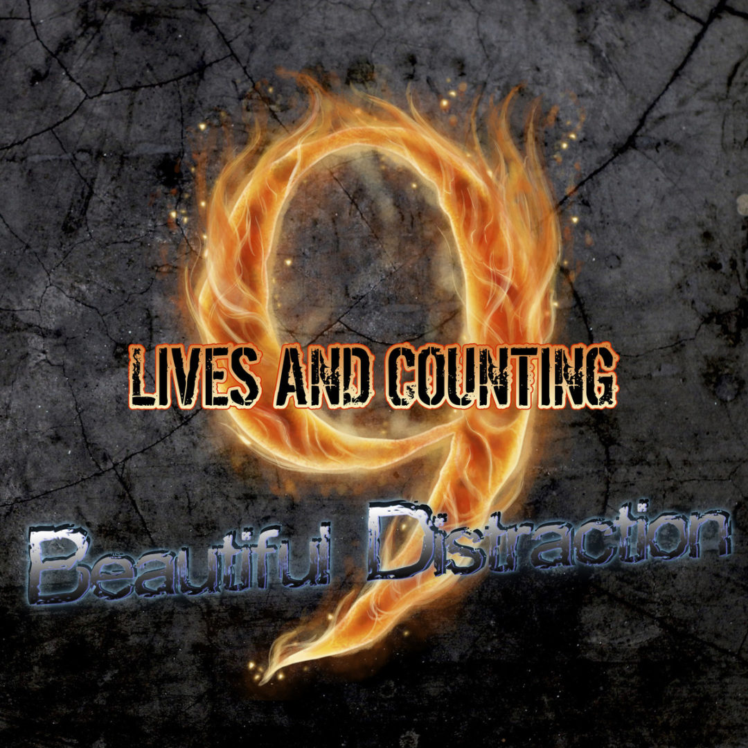 9 Lives and Counting's tracks
