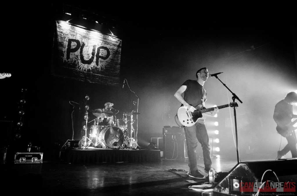 PUP – Photo Credit – Cassandra Popescu