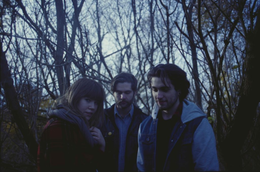 Little Coyote Promo Photo – 1.3MB