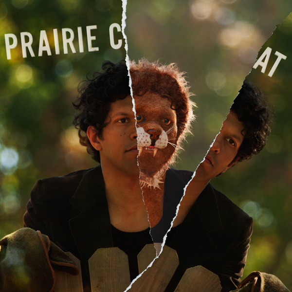 prairie-cat-1