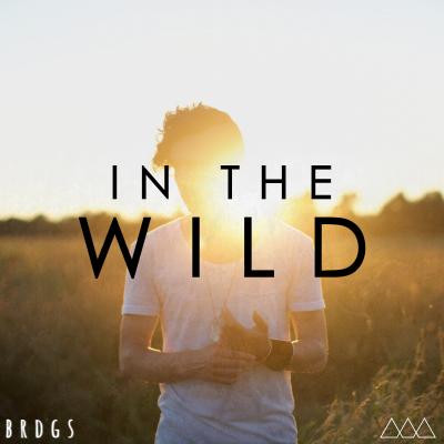In the Wild Album Art FINAL