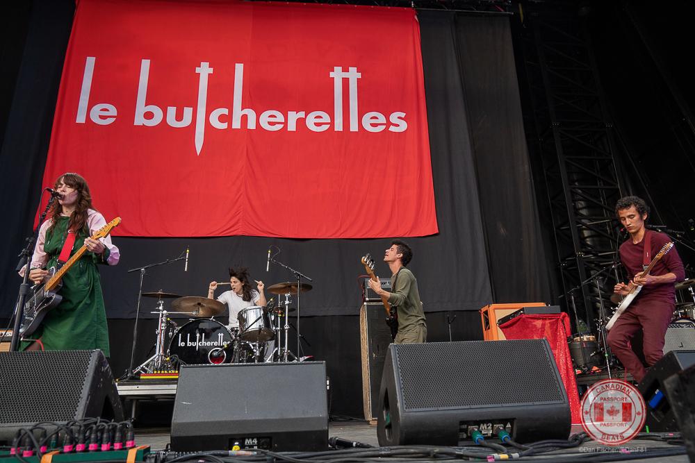 Les Bucherettes -6